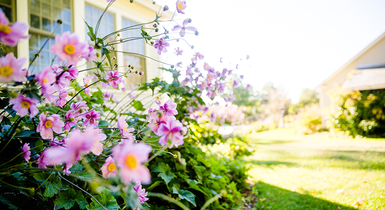 Will the Housing Market Bloom This Spring? | Simplifying The Market